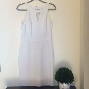 WHBM White Sheath Sleeveless Crepe Halter Dress 4